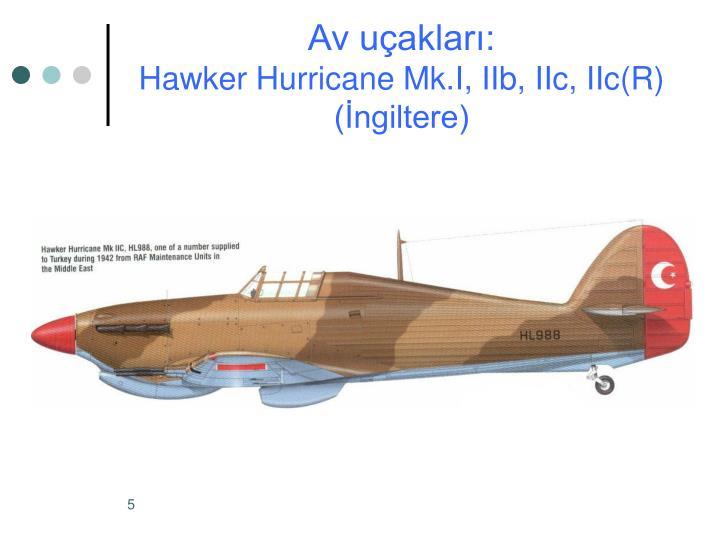 Av uçakları: