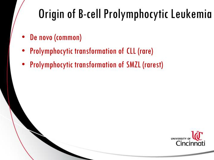 Origin of B-cell Prolymphocytic Leukemia