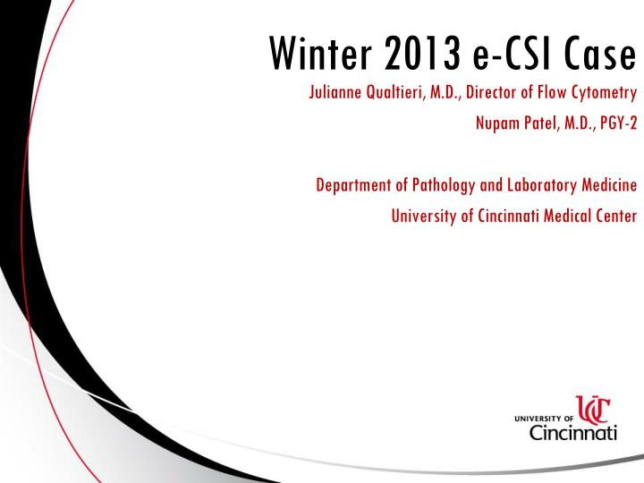 Winter 2013 e csi case