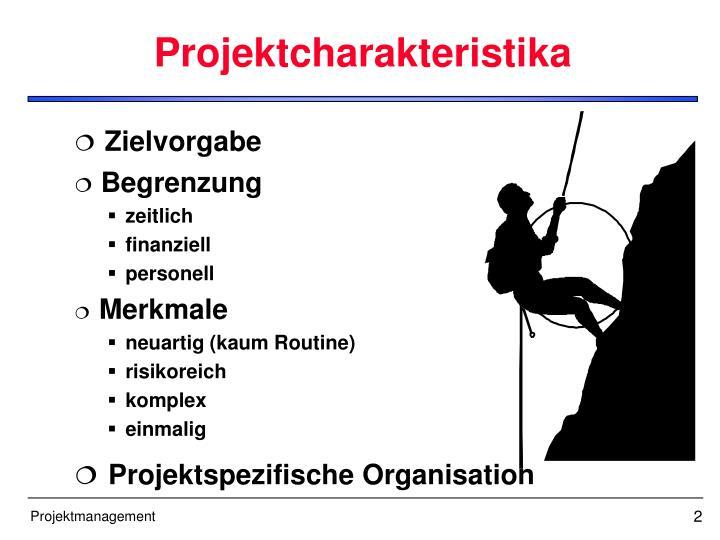Projektcharakteristika