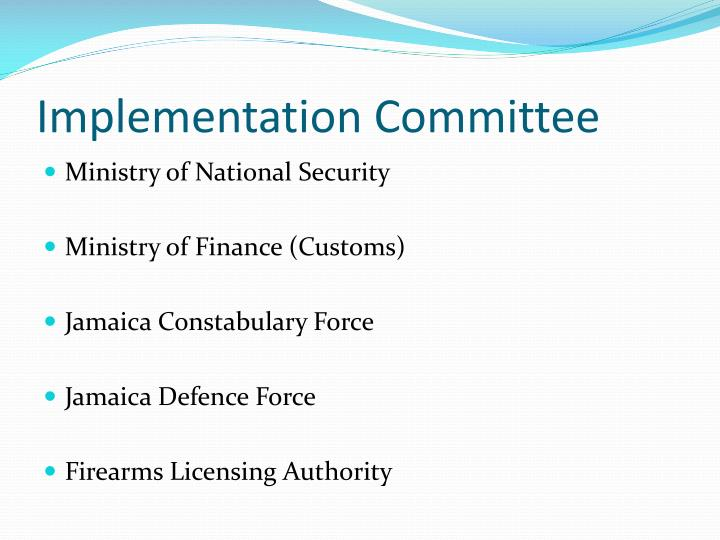 Implementation Committee