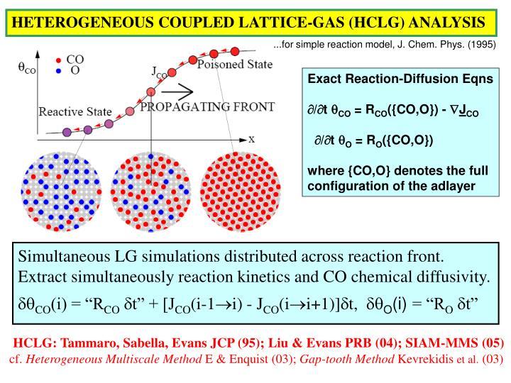 HETEROGENEOUS COUPLED LATTICE-GAS (HCLG) ANALYSIS