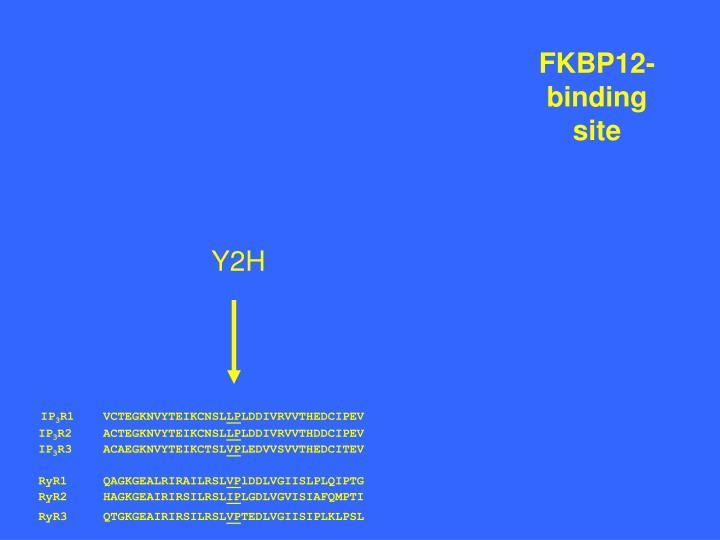 FKBP12-binding site