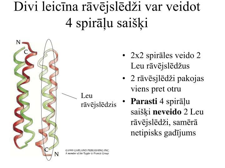 Divi leicīna rāvējslēdži var veidot 4 spirāļu saišķi