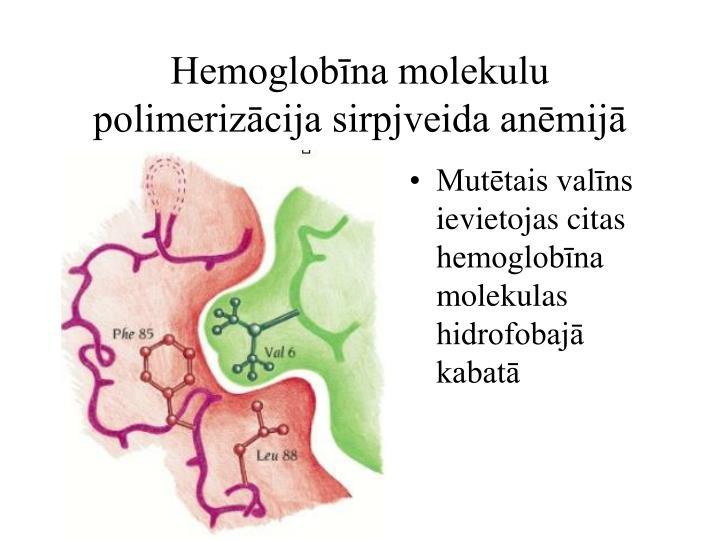 Hemoglobīna molekulu polimerizācija sirpjveida anēmijā