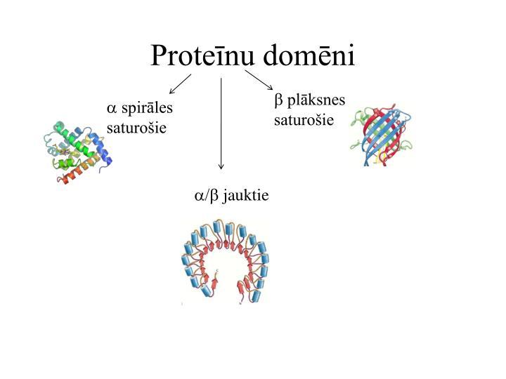 Proteīnu domēni