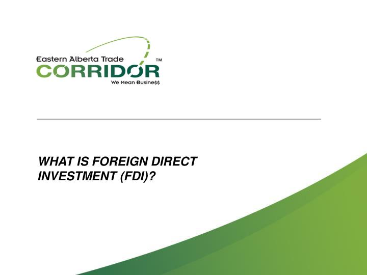 WHAT IS FOREIGN DIRECT
