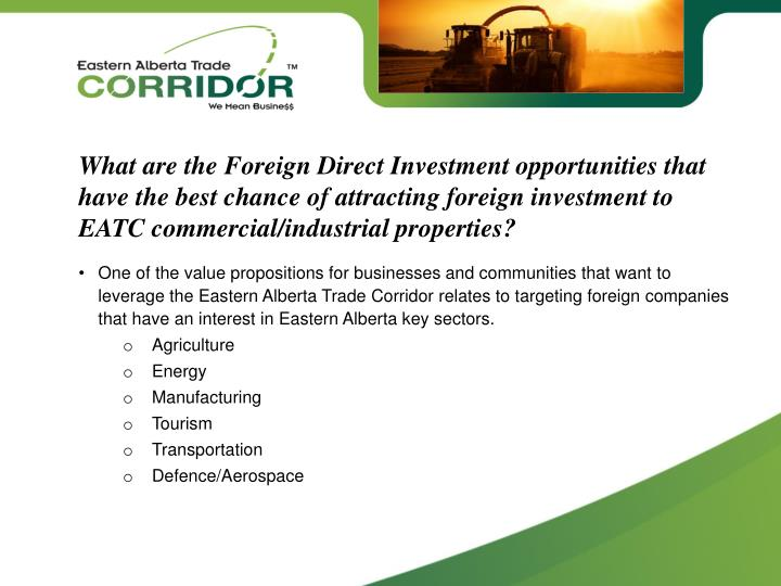 What are the Foreign Direct Investment opportunities that