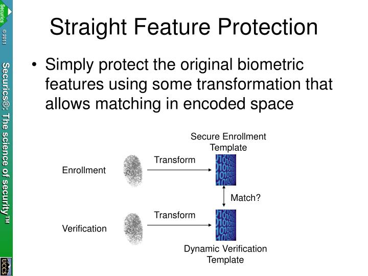 Straight Feature Protection