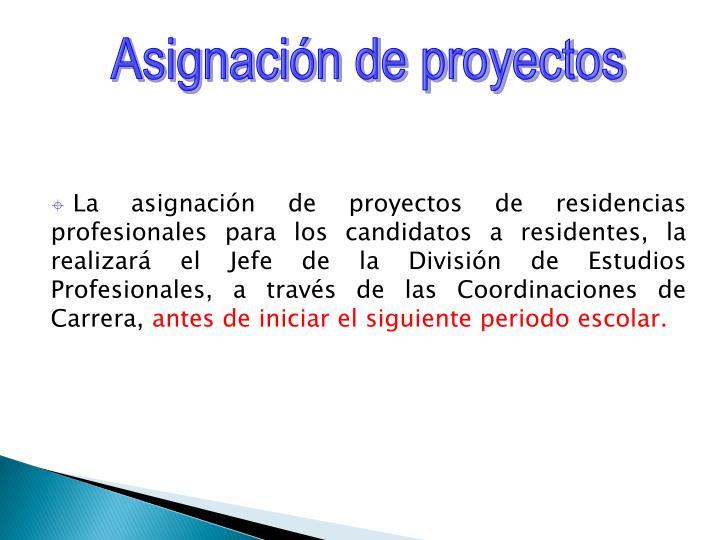 Asignación de proyectos