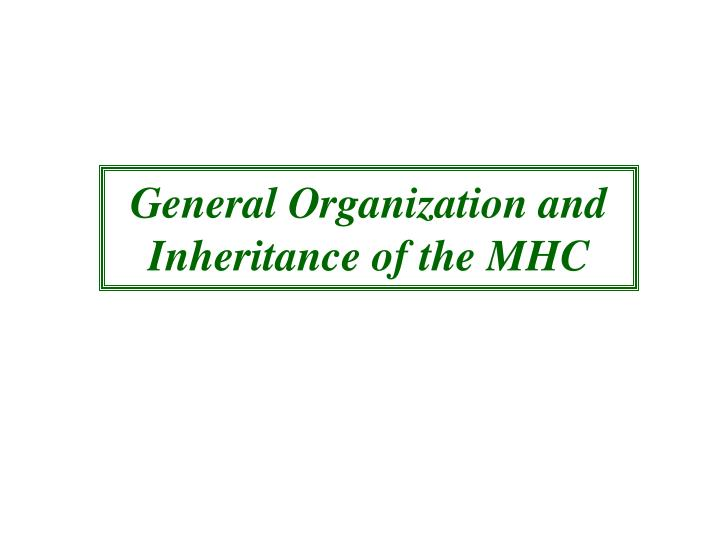 General Organization and Inheritance of the MHC