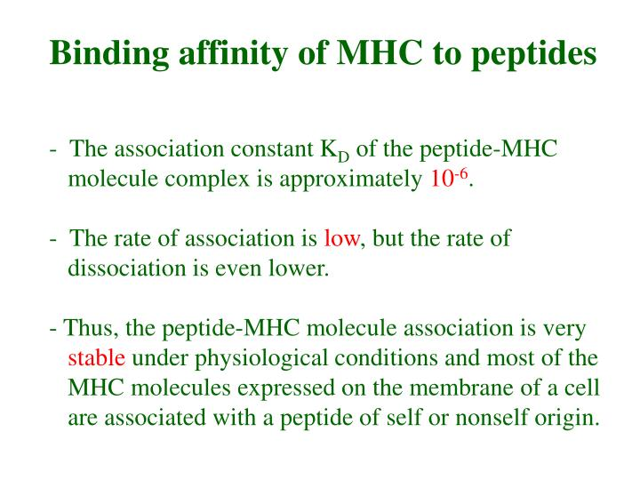 Binding affinity of MHC to peptides