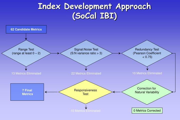 Index Development Approach