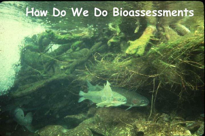 How Do We Do Bioassessments