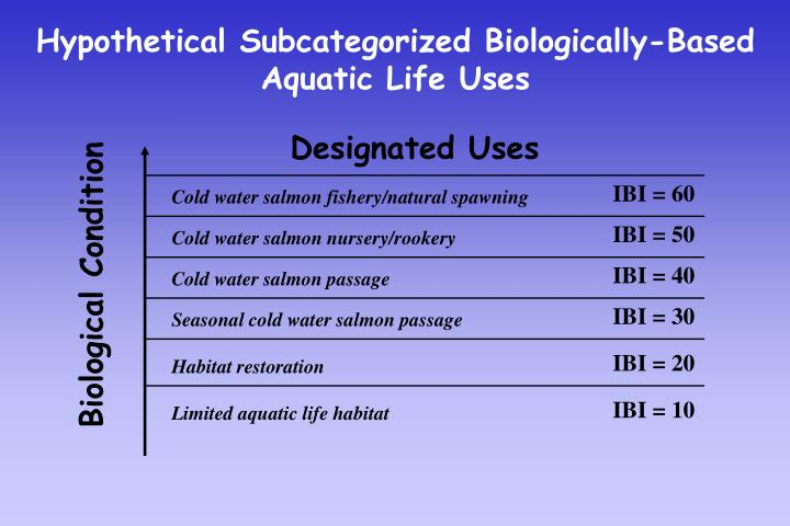 Hypothetical Subcategorized Biologically-Based