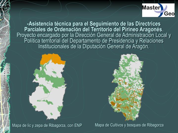 -Asistencia técnica para el Seguimiento de las Directrices Parciales de Ordenación del Territorio del Pirineo Aragonés