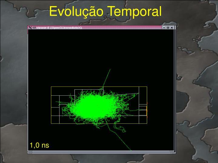 Evolução Temporal