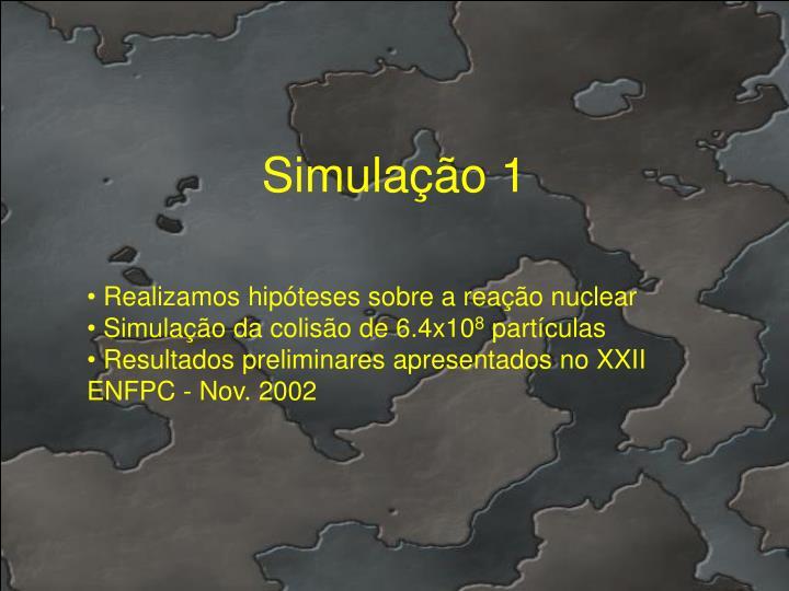 Simulação 1