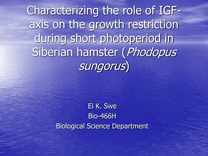 Characterizing the role of IGF-axis on the growth restriction during short photoperiod in Siberian h...