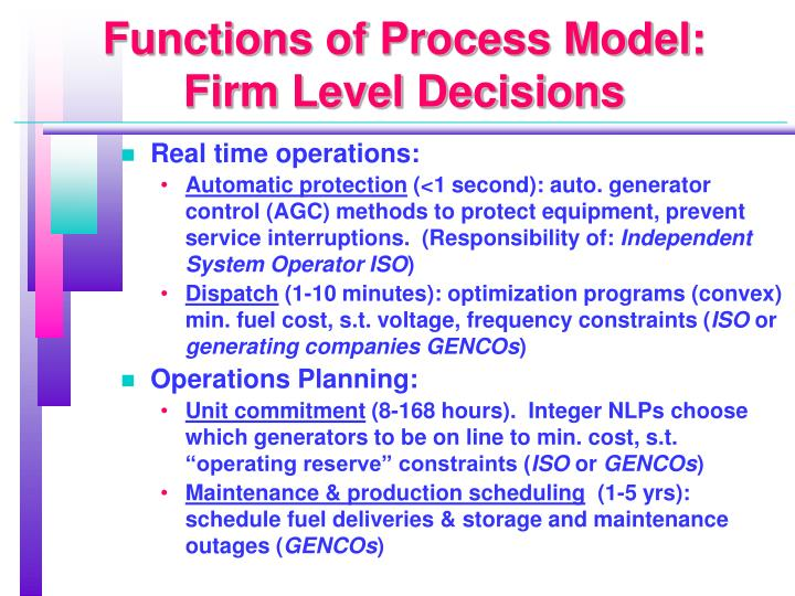 Functions of Process Model: Firm Level Decisions