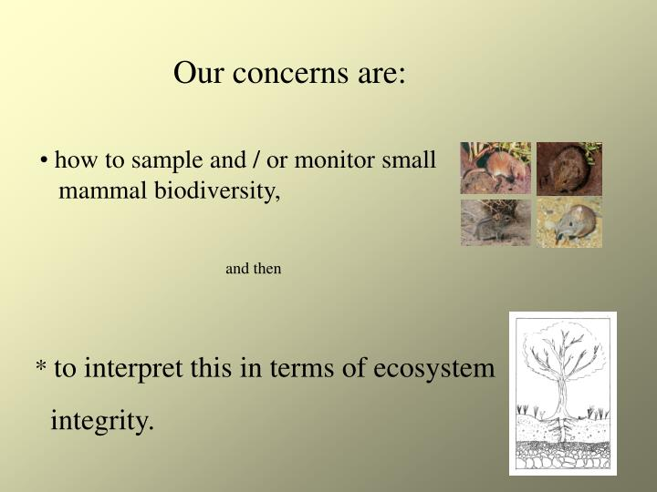 Our concerns are:
