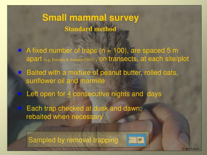 Small mammal survey