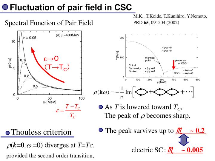 Fluctuation of pair field in CSC