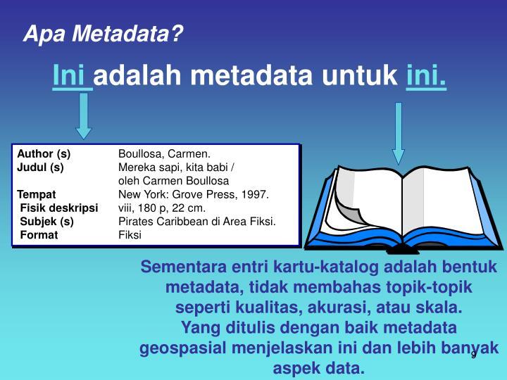 Apa Metadata?