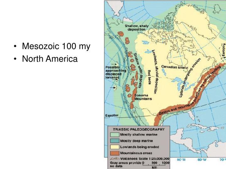 Mesozoic 100 my