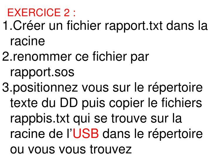 1.Créer un fichier rapport.txt dans la racine