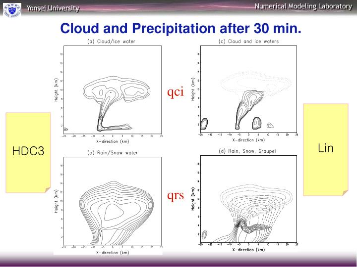 Cloud and Precipitation after 30 min.