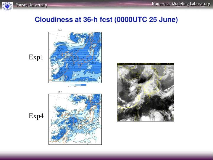 Cloudiness at 36-h fcst (0000UTC 25 June)