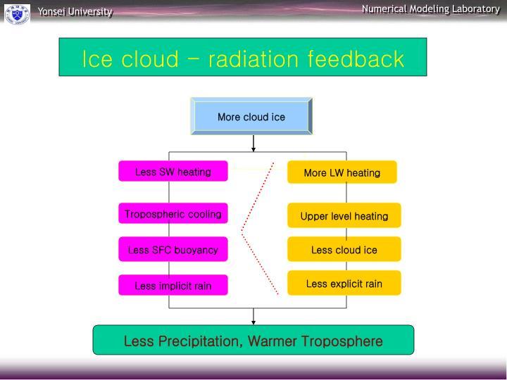 Ice cloud - radiation feedback
