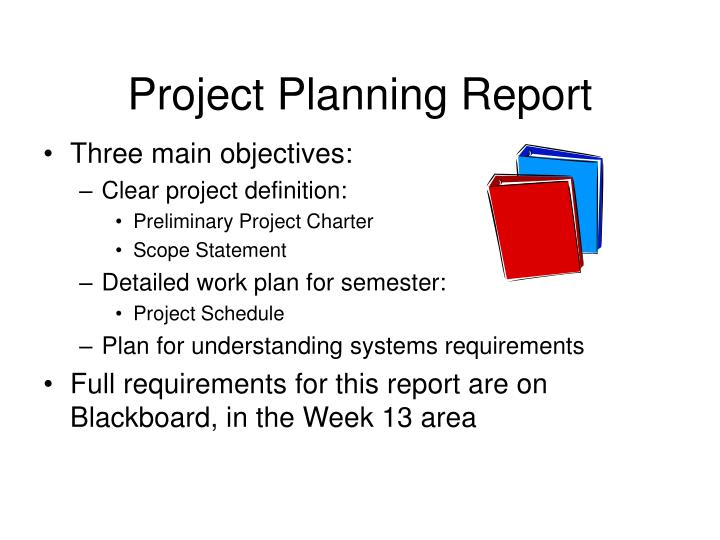 Project Planning Report
