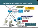 identifying and dropping only ddos traffic 6