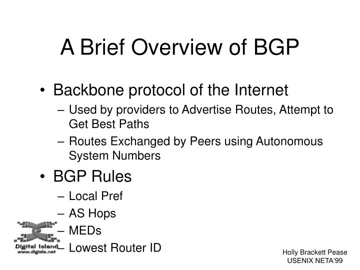 A Brief Overview of BGP