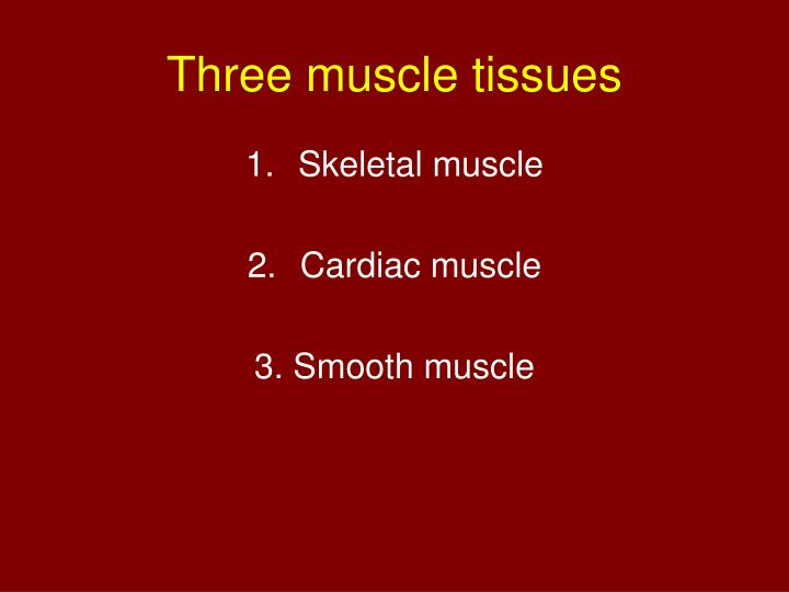 Three muscle tissues
