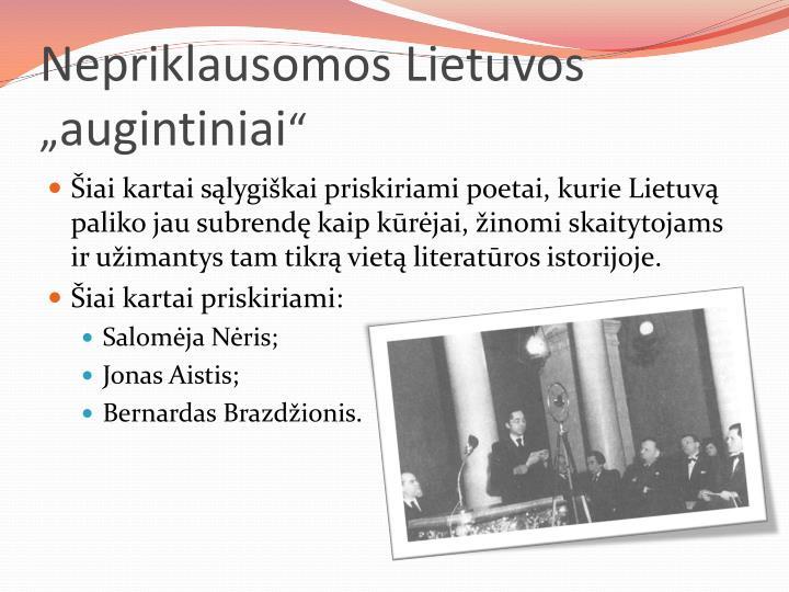Nepriklausomos Lietuvos