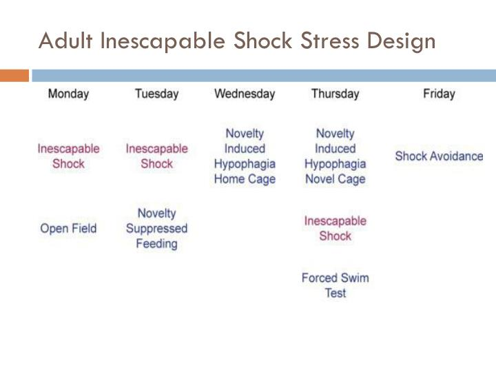 Adult Inescapable Shock Stress Design