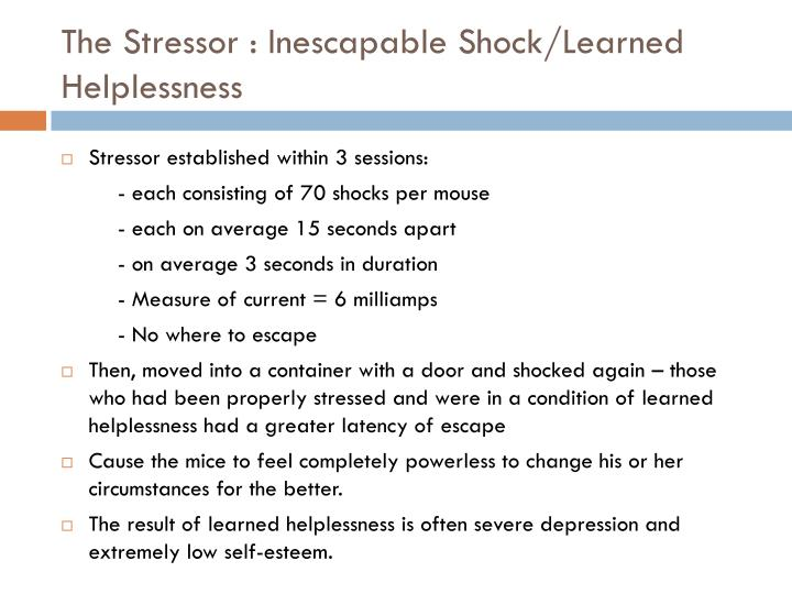 The Stressor : Inescapable Shock/Learned Helplessness