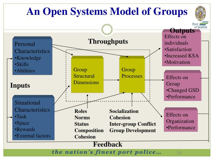 An Open Systems Model of Groups