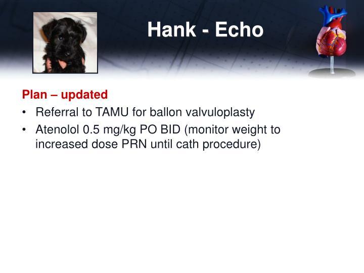 Hank - Echo