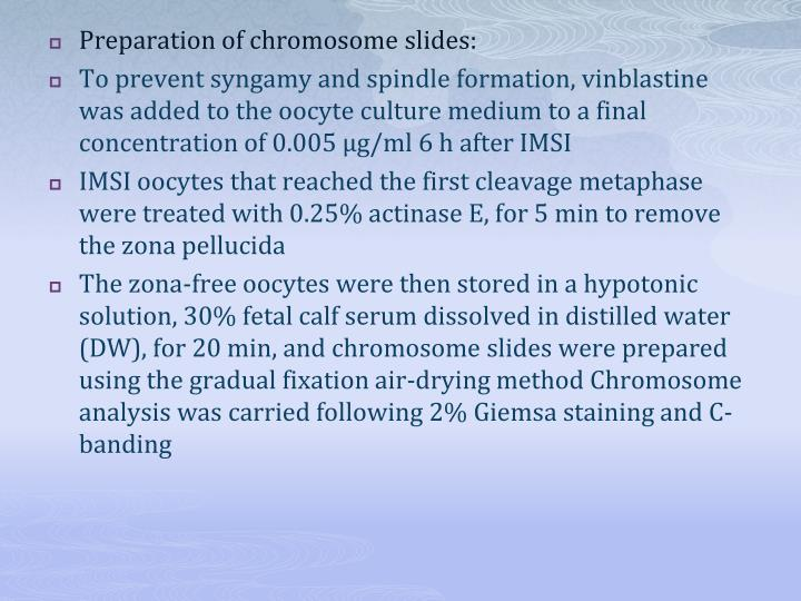 Preparation of chromosome slides: