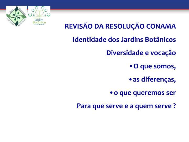 REVISÃO DA RESOLUÇÃO CONAMA
