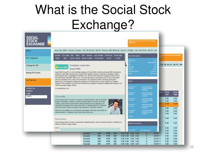 What is the Social Stock Exchange?