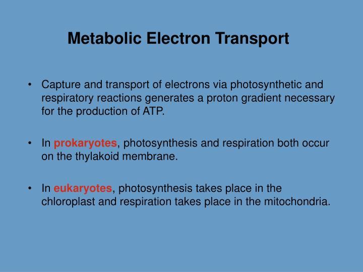 Metabolic Electron Transport