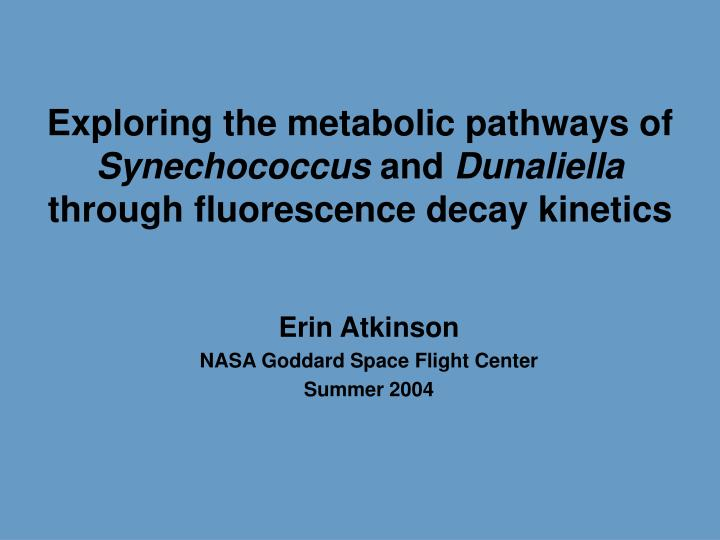 Exploring the metabolic pathways of