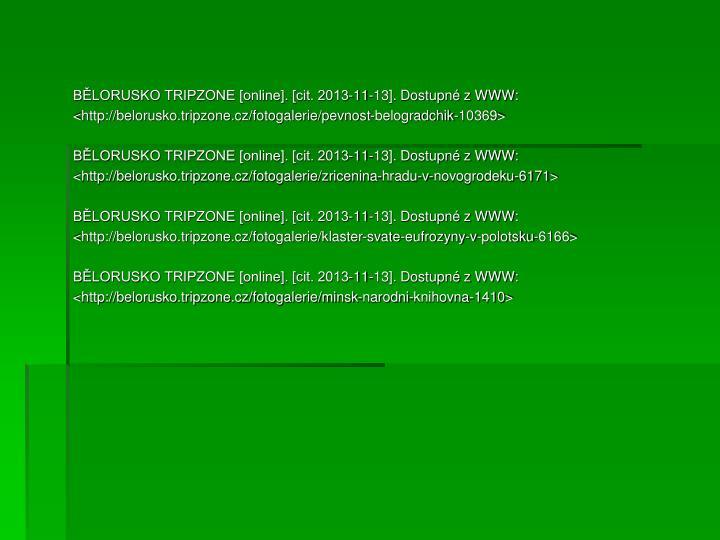 BĚLORUSKO TRIPZONE [online]. [cit. 2013-11-13]. Dostupné z WWW: