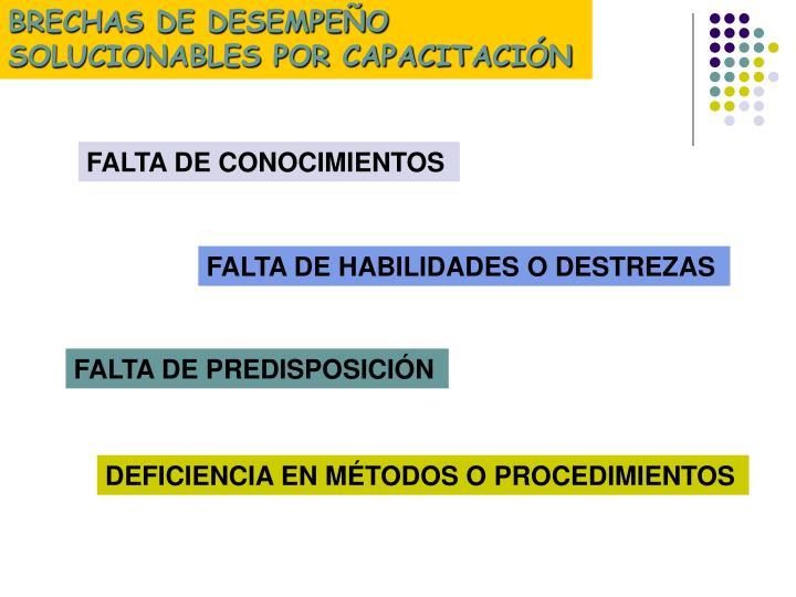 BRECHAS DE DESEMPEÑO SOLUCIONABLES POR CAPACITACIÓN