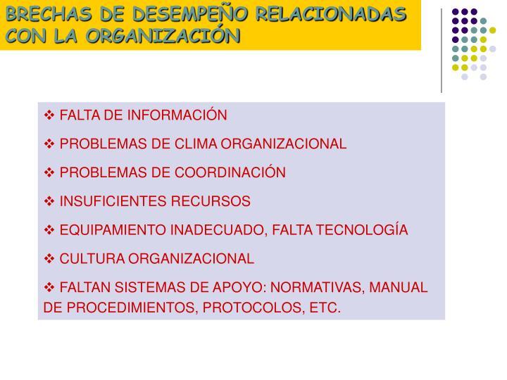 BRECHAS DE DESEMPEÑO RELACIONADAS CON LA ORGANIZACIÓN